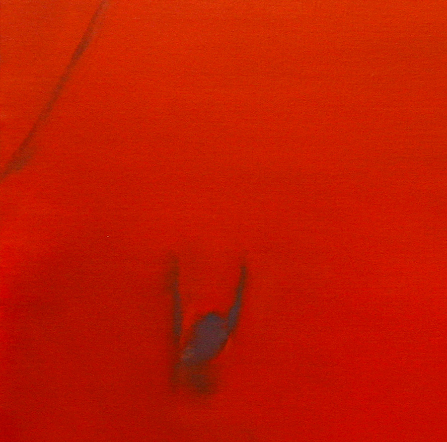 00_Détail_couverture_El-Plomo,-2007,-huile-sur-toile,-120x120cm